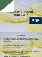 NUTRICIÓN Y FACTORES AMBIENTALES (2)
