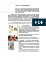 Apunte de Nariz Cavidad Nasal y Cavidades Paranasales