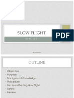 11_Slow Flight NOVID