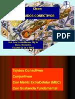 04 Histología Tejidos Conectivos propiamente tales