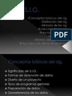 LOS SIG (1)