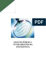 Fundamentos Da Excelencia Em Gestao Publica (1)