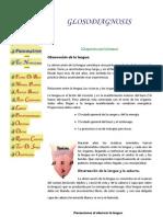 diagnostico.por.la.lengua.pdf