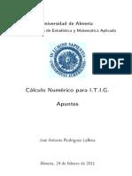 ApuntesCNum2011