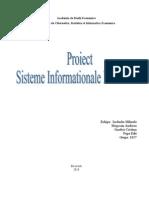 Proiect SIE Grupa 3
