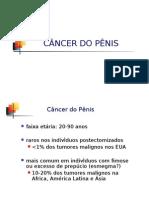 AULA 8 - Tumor de Pênis