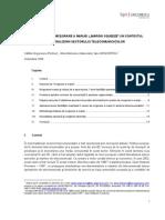 Bpv Grigorescu - Practicile de Micsorare a Marjei in Contextul Liberalizarii Sectorului Telecomunicatiilor