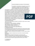 Anatomia y Morfologia de Esporas de Hongos Fitopatogenos