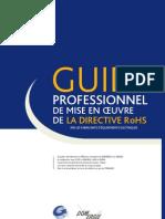 Guide-RoHS_VF_definitif-2010-00803-01-E.pdf