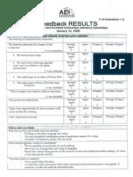 January 15, 2009 AEI Committee Feedback
