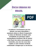 A violência é um fenômeno que tem afetado com maior intensidade a população urbana no Brasil