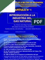 CAPÍTULO No 1 INTRODUCCIÓN A LA INDUSTRIA DEL GAS I