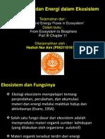 Aliran Materi Dan Energi Dalam Ekosistem
