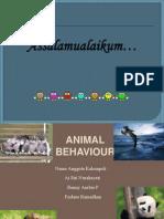 3. Animal Behaviour Ekologi