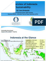 An Overview of Indonesia Sustainability_Liana Bratasida_RevSP(1)