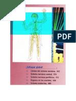 Capítulo de tejido nervioso