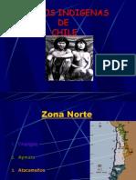 Copia de pueblos-indigenas-chilenos.ppt