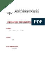 laboratorio 1.1