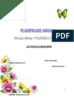 0_20_planificare_anuala
