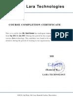 Laraa Certificate-Sant 2