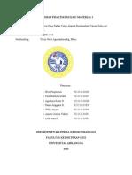 Laporan Praktikum Ilmu Material i