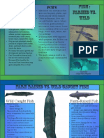 fish brochure 2 copy