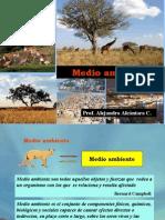 Ecologia Medio Ambiente II