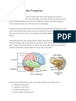 Anatomi Otak dan Fungsinya.docx
