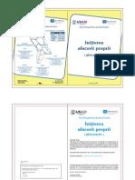 Initierea afacerii proprii ROM.pdf