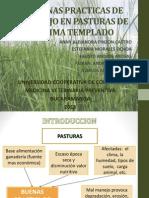BUENAS PRACTICAS DE MANEJO EN PASTURAS DE CLIMA (1).ppt