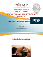 Diagnostico en Psicologia e Intervencion en Psicoterapia. SEMANA 7