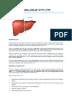 Bahaya Mengintai Akibat Fatty Liver