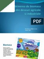 Biomasa proiect powerpoint