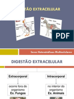 5.Digestao_Extracelular