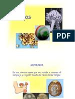 Micosis Clínica