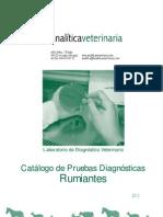 Catalogo Analisis