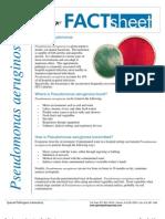 FactSheet Pseudomonas