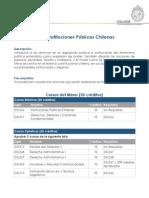 Minor Instituciones Publicas Chilenas_2011