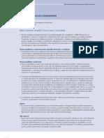Raportul Auditorului Independent Si Situatiile Financiare 38 RO
