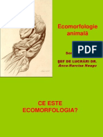 Curs 1 Ecomorfologie Animala Teorii