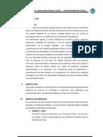 Monografia de Membrana 2013 Arreglado