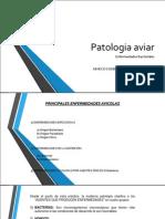 Patologia aviar BACRERIALES E COLI 1.pdf