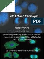 Aula Ciclo Celular Rodrigo Martins 2011 2