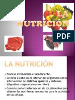 lanutricin-120528150034-phpapp01