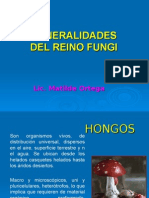 generalidades del reino fungi