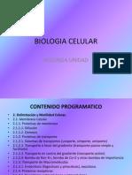 Biologia Celular 2