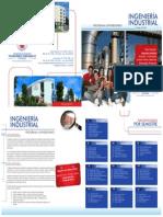 IngIndustrial.pdf