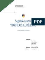 SEGUNDO AVANCE PÓRFIDOS AURÍFEROS (ENCHULADO)