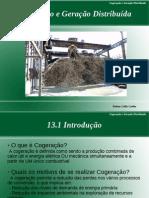 Seminário - Cogeração e Geração Distribuída - PDF