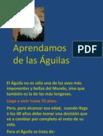 A Prend Amos Del as Aguila s